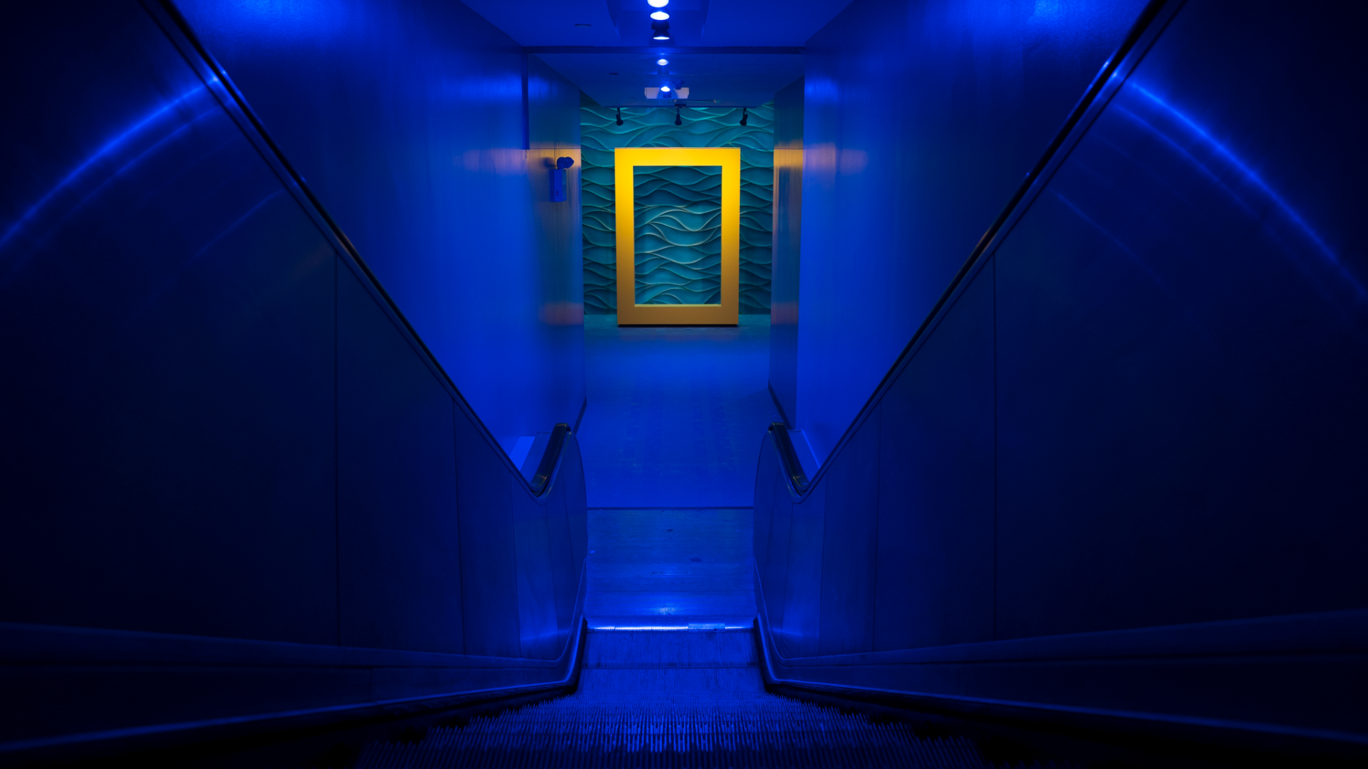 Descent to ticket lobby at the National Geographic Encounter: Ocean Odyssey