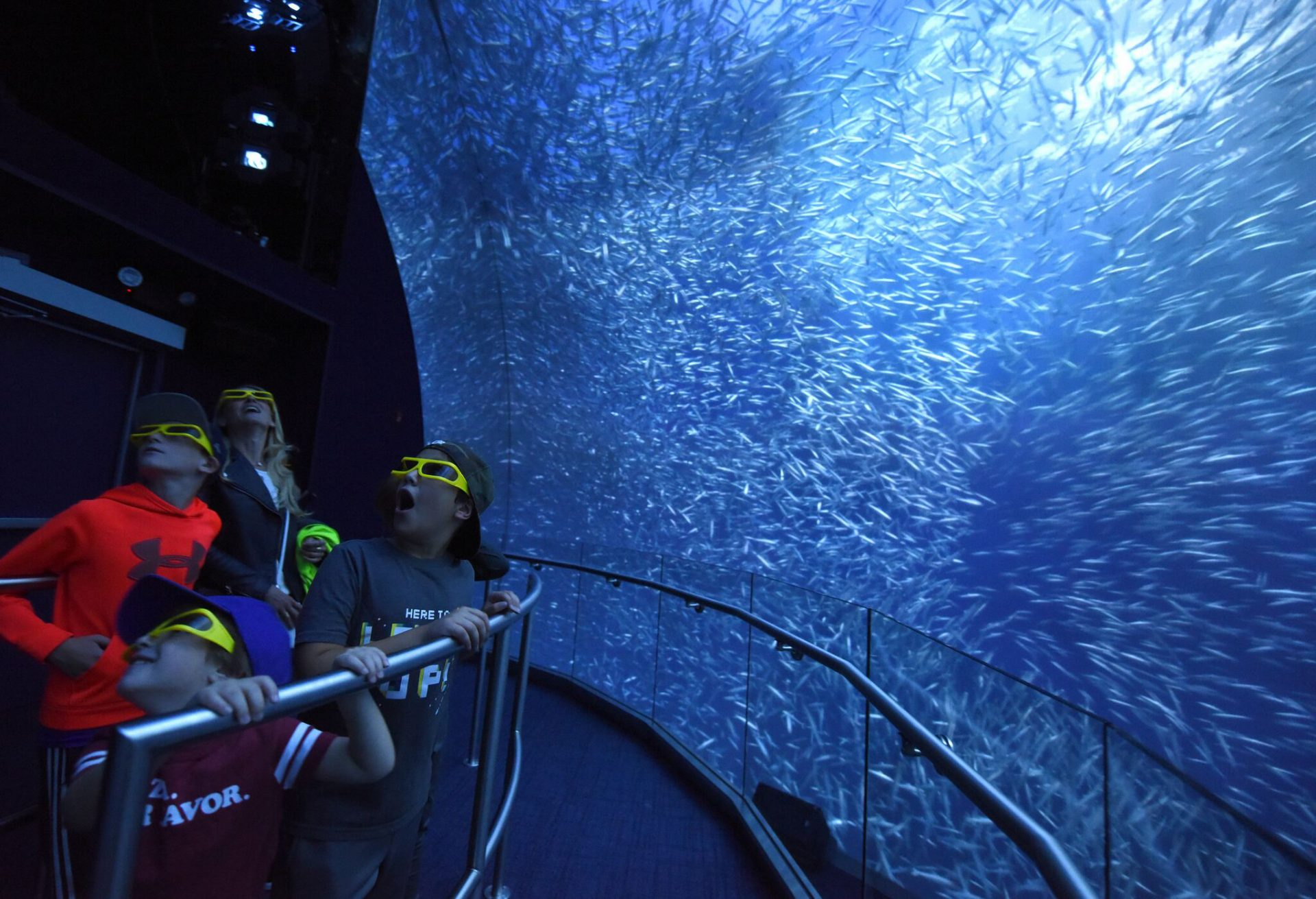 Large digital aquarium within National Geographic Encounter: Ocean Odyssey